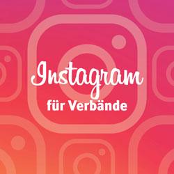 instagram-fuer-verbaende-titel_-verbandsstratege